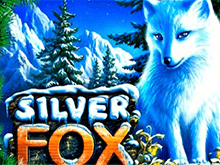 игровой автомат Silver Fox / Серебряная Лиса / Песец / Полярная Лиса