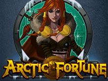 игровой автомат Arctic Fortune / Арктическая Фортуна / Арктическое Богатство